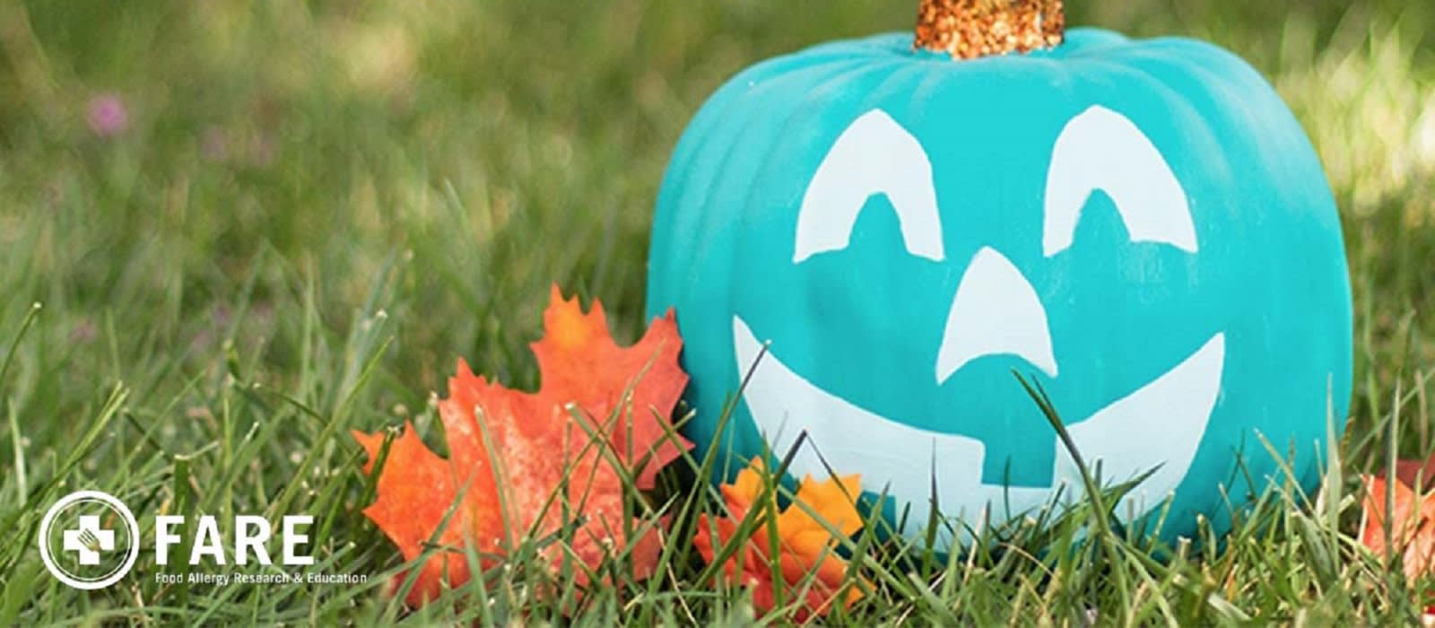 Teal pumpkin as part of the Teal Pumpkin Project